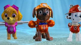Playlist of Baby Shark Paw Patrol Chase Toys 🎼 Dogs Paw Patrol Music for Kids