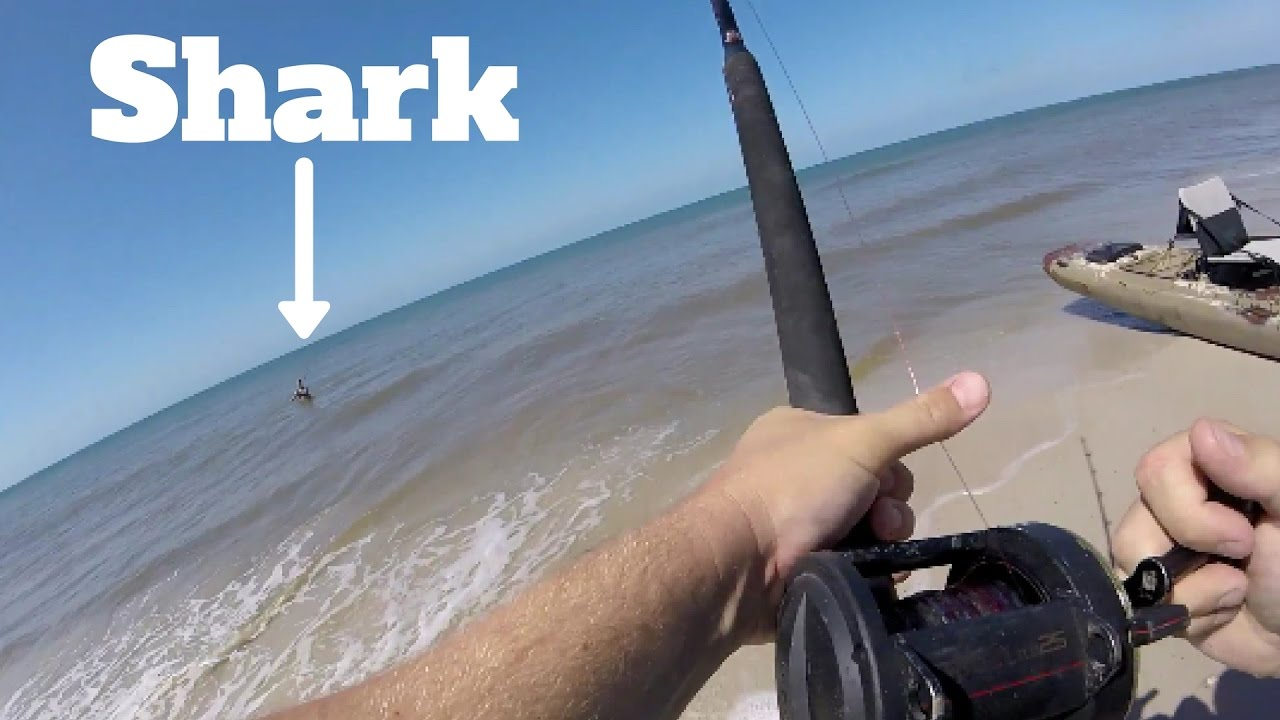 Beginner shark fishing on the beach in florida crazy for Shark fishing gear for beach