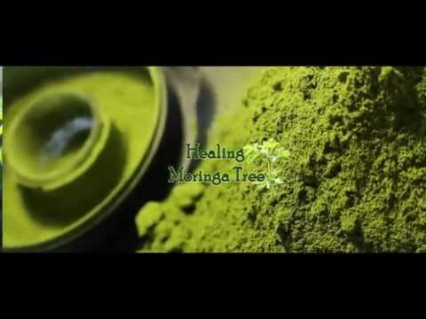 Organic Moringa Powder (Mega Green)