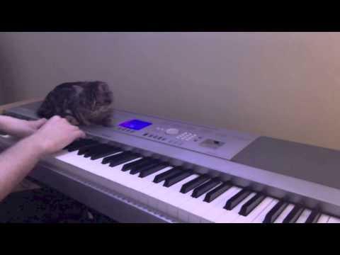 Sad Piano Music - Ache | Feat. Ripley (Original Composition)