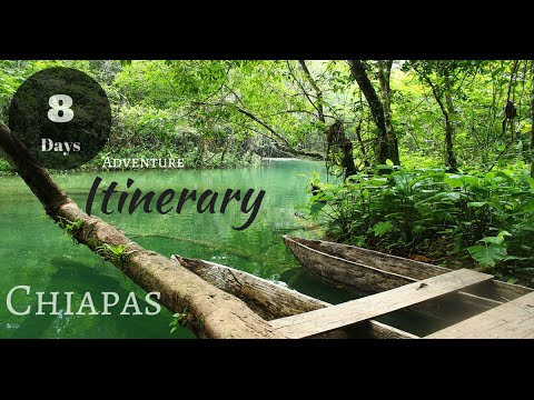 Chiapas 8 days itinerary