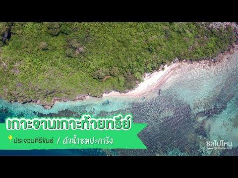 ดำน้ำชมปะการังเกาะจานเกาะท้ายทรีย์ ประจวบคีรีขันธ์