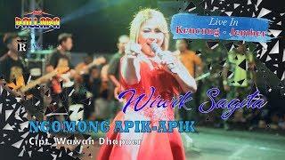 Wiwik Sagita Ngomong Apik Apik Cipt Wawan Dhapoer New Pallapa Kencong Jember MP3