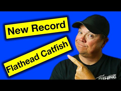 New Record Flathead Catfish