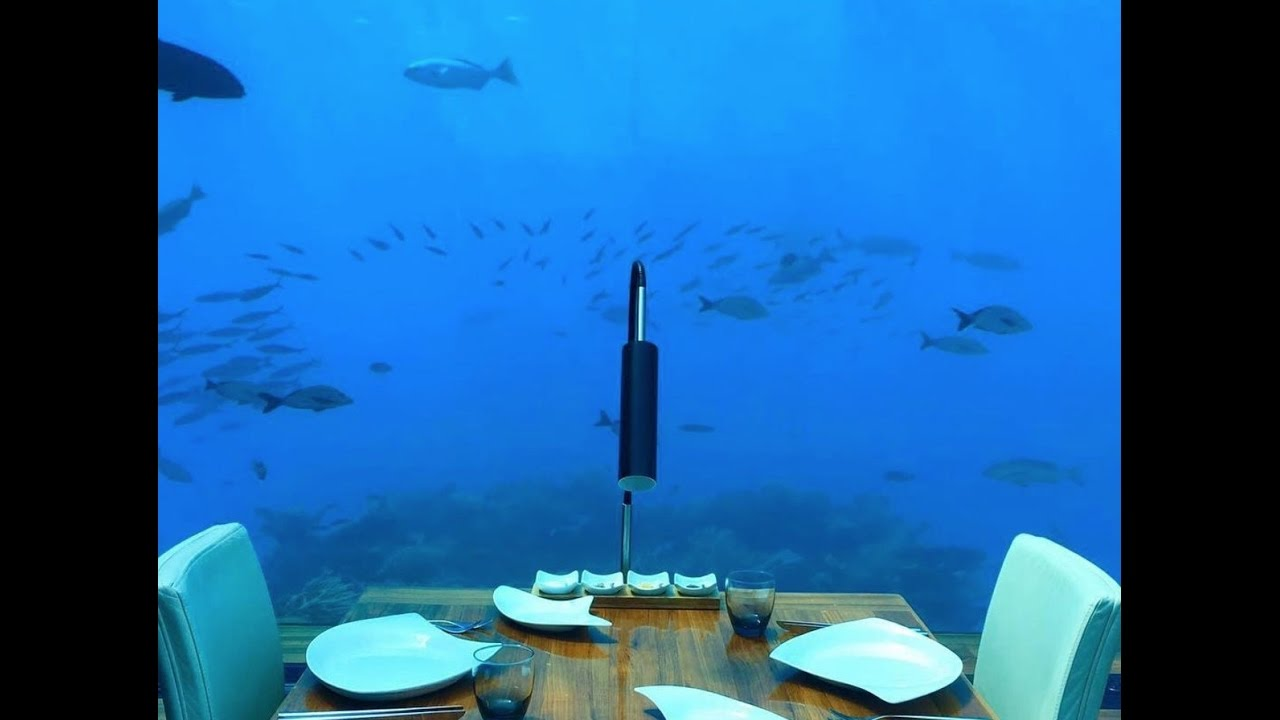 Ithaa Undersea Restaurant At Conrad Maldives Rangali Island Youtube