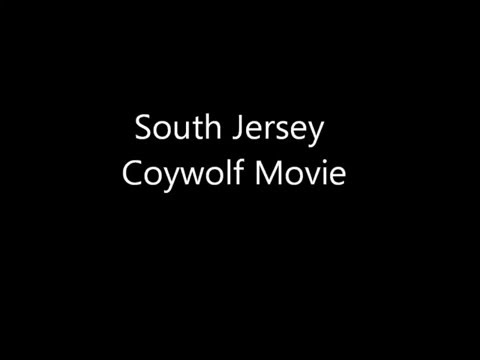 South Jersey Coywolf Movie