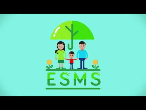 ESMS: An opportunity for Banks (1/5)