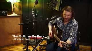 The Mulligan Brothers - Stubborn Love (The Lumineers Cover)
