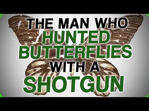 The Man Who Hunted Butterflies With A Shotgun