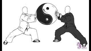 тайцзицюань на ринге /ч.2: правила позволяют побеждать и китайское мошенничество в придачу