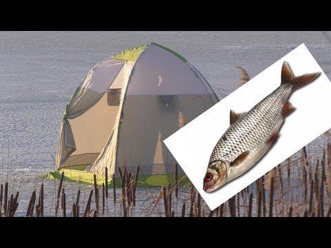 зимняя рыбалка на карпа - 2018-02-27 09:06:29