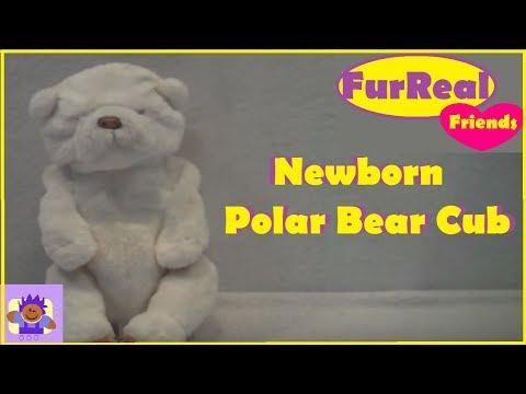 Furreal Friends Newborn Polar Bear Cub animatronic toy By Hasbro