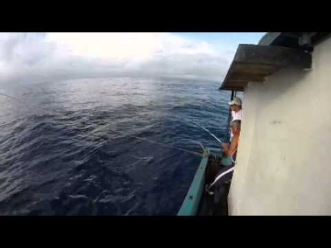 Arnaldo santana Malaca pegando atum