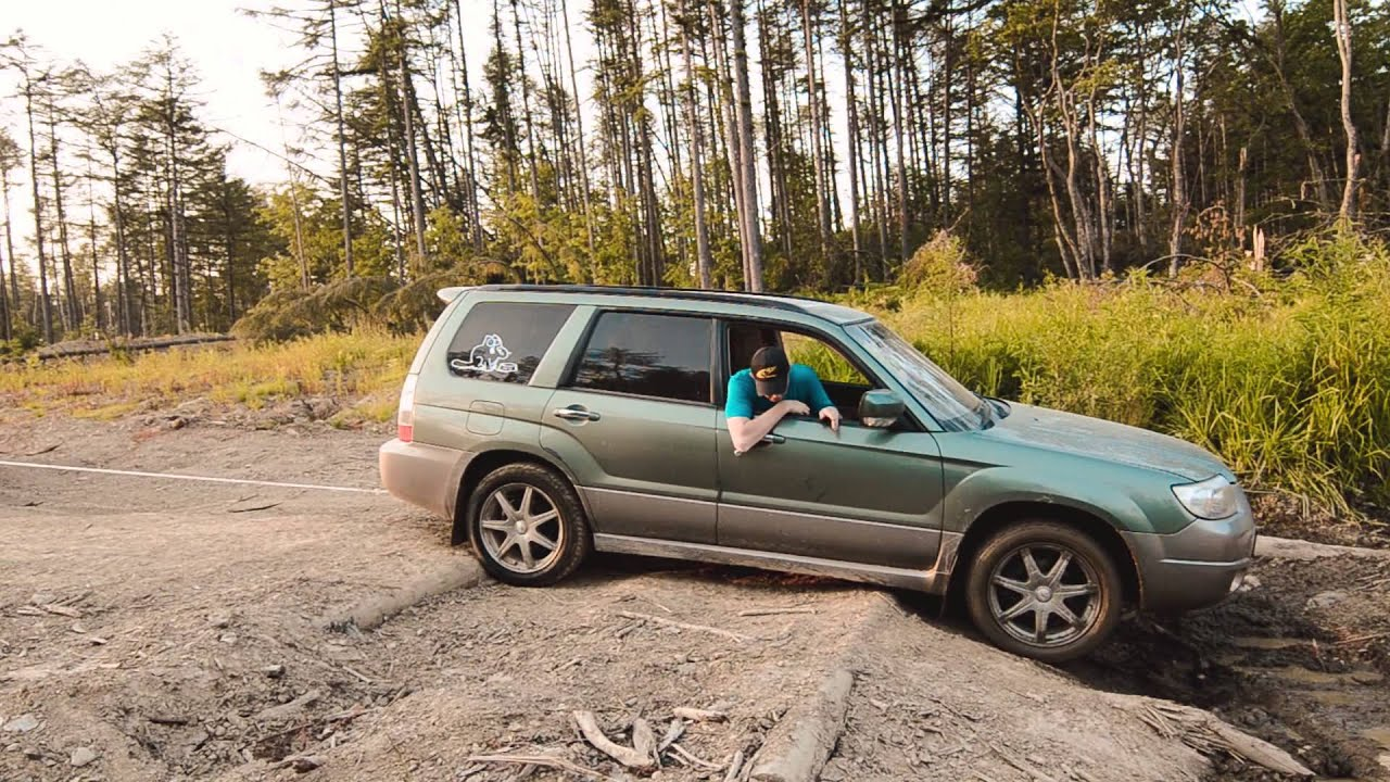 Subaru Premium 2014 >> Subaru Forester SG & SH in the woods, Sakhalin, RUS - YouTube