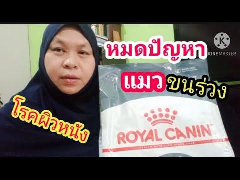 อาหารสำหรับแมวขนร่วงRoyal canin Hair skin ดูแลสุขภาพผิวและขนให้เงางามอาหารแมวRoyalcanin