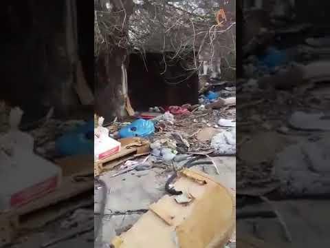 Репортер UA: Жители Запорожья страдают от гор мусора во дворах 2