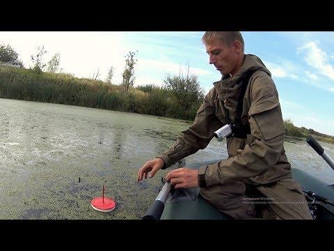 Оставил жерлицы без присмотра и вот что произошло! Осенняя рыбалка на жерлицы. Рыбалка на спиннинг.