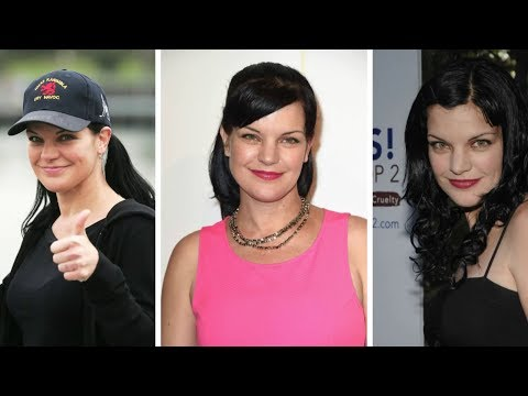 Pauley Perrette: Short Biography, Net Worth & Career Highlights