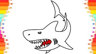 White Shark Drawing🦈 & Coloring Page🎆 How to Draw Shark for Kids. Art Drawing & Coloring Video