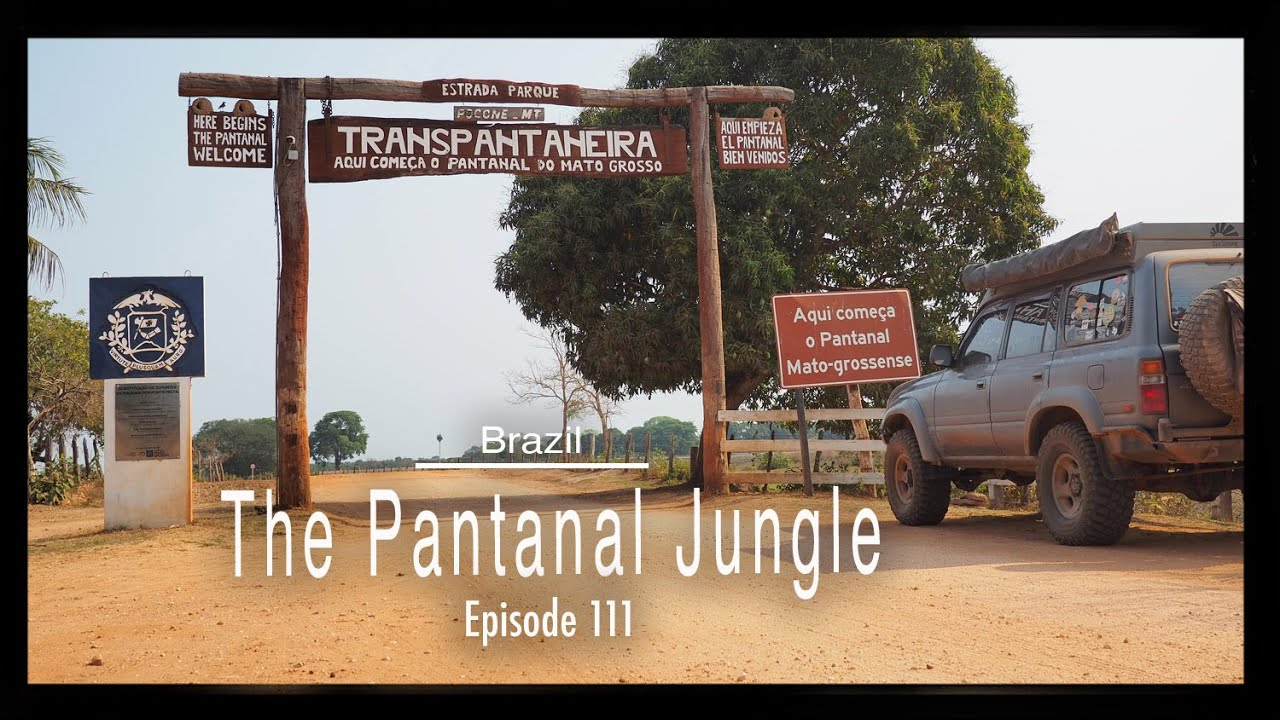 Brazil - The Pantanal Jungle (Tim and Kelsey get lost Ep 111)