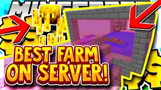 THE BEST FARM ON THE SERVER + SUPER RICH DONATIONS | Minecraft Skyblock | Skylords | [3]