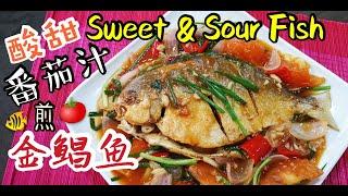 How to Cook Sweet u0026 Sour Fish 酸甜鱼 ???? 【Malaysia Chinese Recipe】 Fish Recipe 鱼的煮法