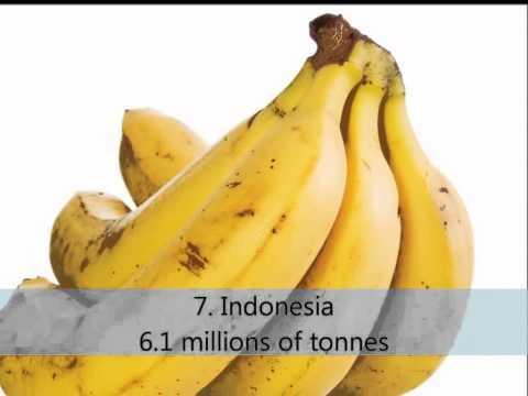 Top 10 Banana Producing Countries