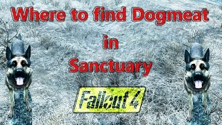 Dogmeat location in Sanctuary Hills: Fallout 4