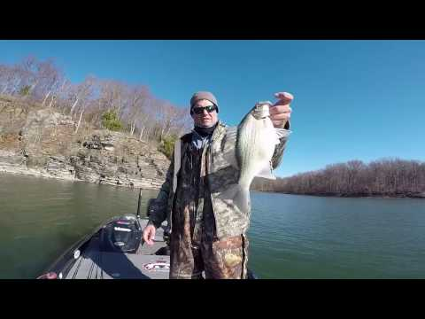 Easy Winter White Bass Fishing and BONUS BIG LARGEMOUTH BASS!