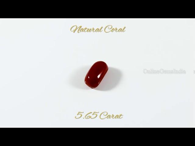 NATURAL RED CORAL (ITALIAN ) 5.65 CARAT