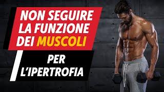 Non seguire la funzione dei muscoli per l'IPERTROFIA!
