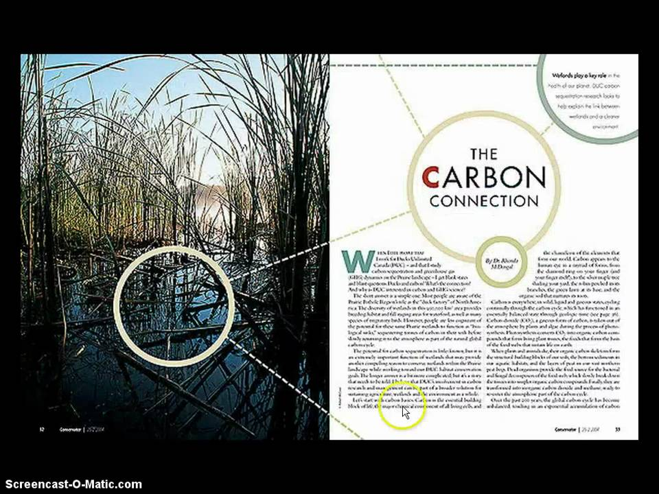 Introduction to Magazine layouts.mp4 - YouTube