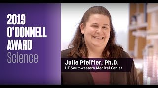 TAMEST 2019 O'Donnell Award in Science: Julie Pfeiffer, Ph.D.