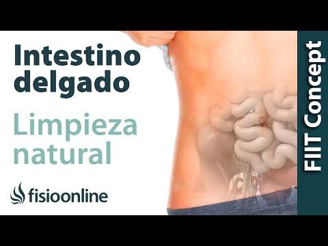 Los ejercicios para el refuerzo de los músculos del departamento de pecho a la osteocondrosis