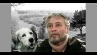 """Лучшие фильмы о животных. """"Белый Бим Чёрное Ухо"""""""