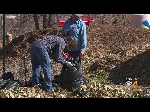 Family Farm Going Strong Thanks To Lakewood Community