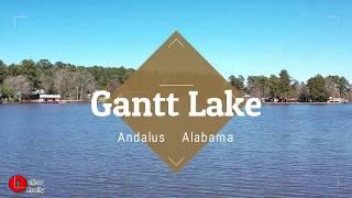 Gantt Lake Video