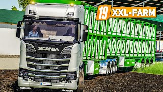LS19 XXL Farm 111: Der neue XXL-Kuhstall - Der große Kuh-Umzug | LANDWIRTSCHAFTS