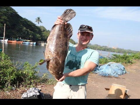 рыбалка в гоа фото