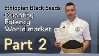 Ethiopian Black Seeds: Quantity, Potency, World Market