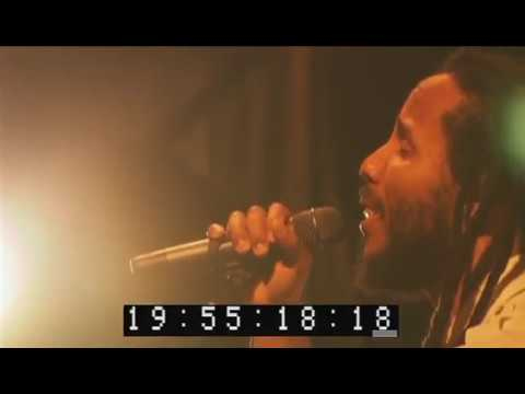 Conscious Party - Ziggy Marley live at Summer Sonic Festival, Tokyo  (2011)