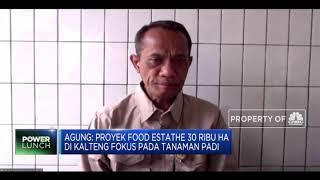 Akhir 2020, Kementan Siap Panan 30 Ribu Ha Sawah Food Estate Kalteng