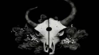 Demon hunter Annihilate the corrupt