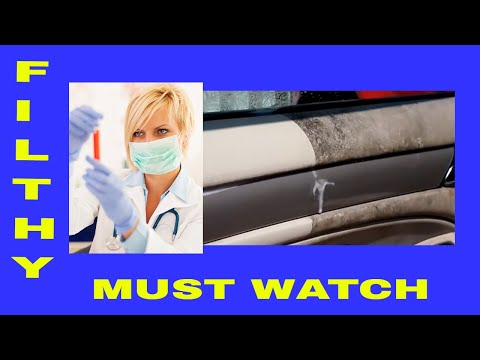 Auto Detailing Disgusting Nasty Dirty Car Panels , Vinyl Leather Rubber