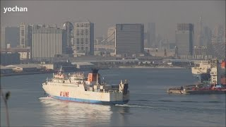 Ro-Ro / Passenger Ship: CRUISE FERRY HIRYU 21  クルーズフェリー飛龍21(マルエーフェリー)東京港