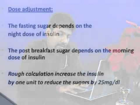 insulin therapy in diabetes