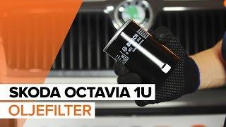 Kolla in vår användbara video om bilunderhåll