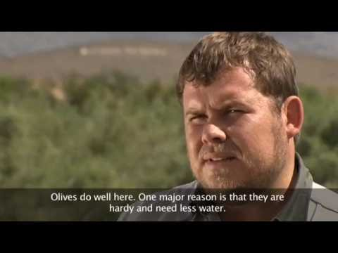 Omang? - Prince Albert Agricultural Community