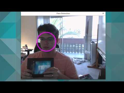Basic Face Detection