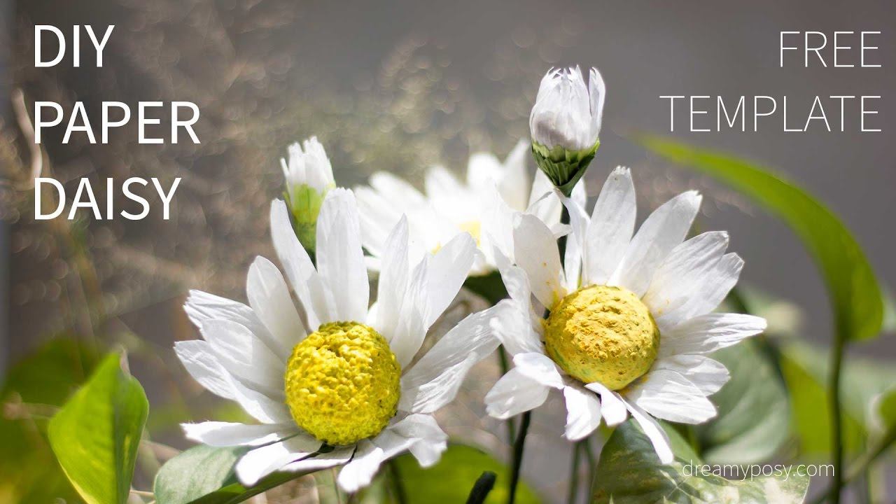Free template and tutorial paper daisy flower youtube free template and tutorial paper daisy flower izmirmasajfo